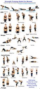 Bench Press Using Dumbbells by Workout Tips Makinghealthahabit