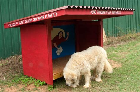 lean to dog house plans lean to dog house plans