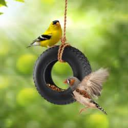 Backyard Ideas With Pools - swingtime ceramic tire swing bird feeder the green head