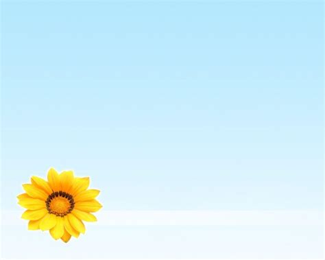 Summer Flowers Wallpapers Wallpaper Cave Free Flower Backgrounds Wallpaper Cave