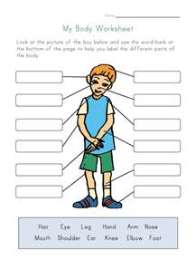 body parts worksheet for kids
