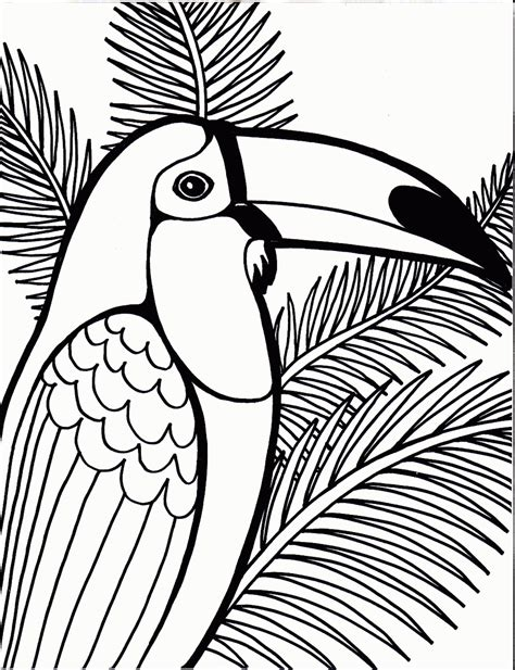coloring  blog archive bird coloring pages