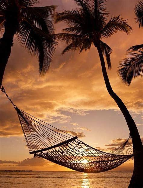 Sunset Hammock hammock sunset my moment of zen