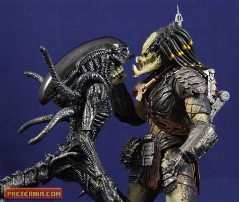 the gallery for gt predalien vs wolf predator