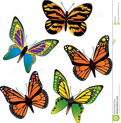 vector butterfly royalty free stock image image 2363046