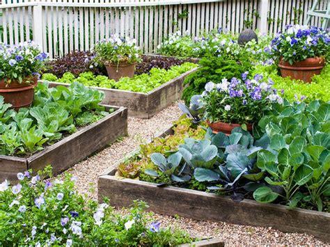 small space edible landscape design hgtv