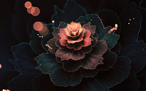 abstract rose wallpaper abstract fractal rose absorb wallpapers abstract fractal