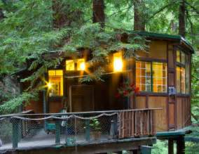 7 tree house rentals for v day brit co