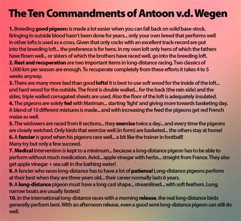 Vans St Ifc by Syndicate Lofts Antoon And Der Wegen 3 Times