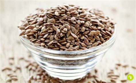 semi di lino uso alimentare semi di lino propriet 224 e usi contro la stitichezza e non