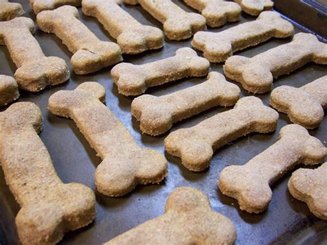 puppy treats per your pooch with these 5 vegan treats