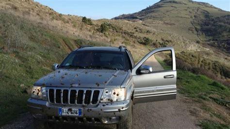 Headl Gran Max By Motor jeep grand 3 1 td sostituzione testate vm
