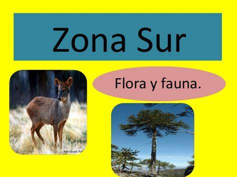 power zonas geo y flora y fauna ppt flora fauna y paisajes por zonas