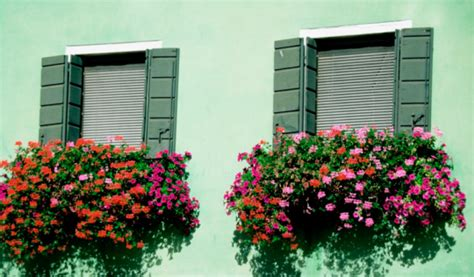 hanging window flower boxes how to hanging a window box popsugar home