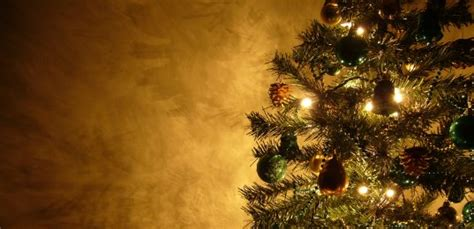 god s christmas tree ministry127