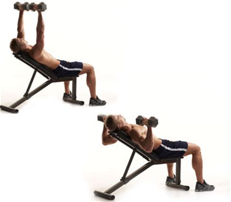 dumbell incline bench health and fitness for life workout of the day