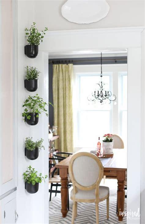 creative ways  plant  vertical garden
