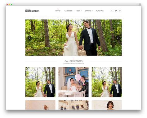 Best Wedding Photography Websites by 30 Best Wedding Events Marriage Themes 2016