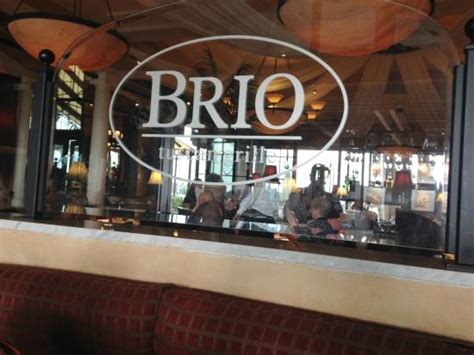 brio tuscan grill sarasota dining room picture of brio tuscan grill sarasota