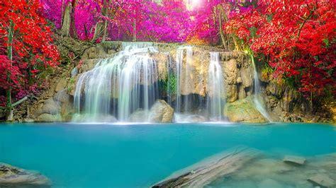 hd wallpaper forest leaves beautiful waterfall