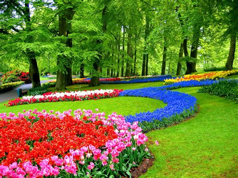 Gardening Keywords Keukenhof Related Keywords Suggestions Keukenhof