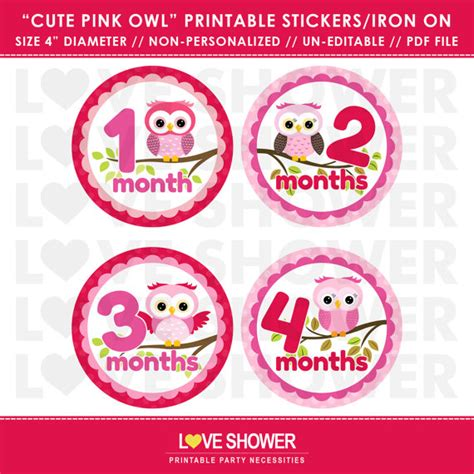 printable iron on stickers cute pink owl printable monthly stickers or iron on transfers