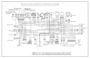 50cc alpha sports wiring diagram 50cc free engine image for user manual