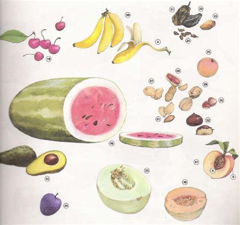 imagenes de verduras que empiecen con la letra e vegetales y frutas en ingl 233 s imagui