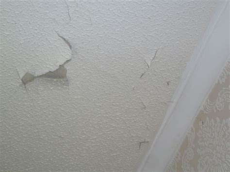Cleaning A Textured Ceiling by Issues And Repairs Branz Maintaining Home