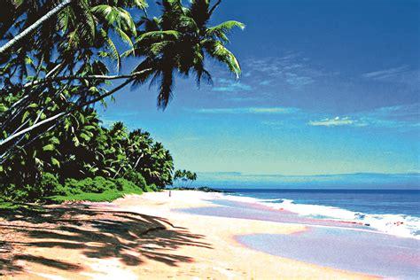 sri lanka best beaches sri lanka s best beaches the himalayan times