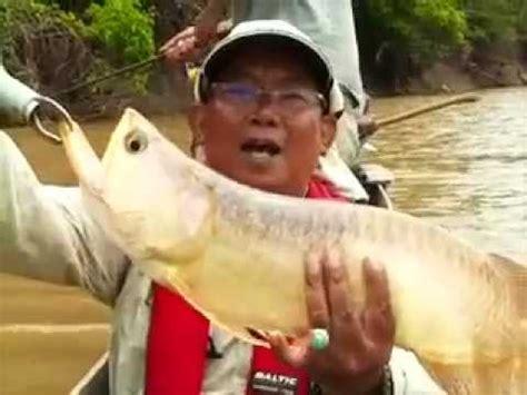Pancing Tercanggih mancing mania ikan terbesar di dunia mancing ikan tuna terbesar di dunia