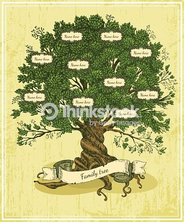 Genealogical Tree On Old Paper Background Vector Art Thinkstock Family Tree Stock Illustrations 25 863 Family Tree Stock Illustrations Vectors Clipart