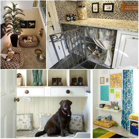 dog space in house helpful tips when bringing a new dog into your home