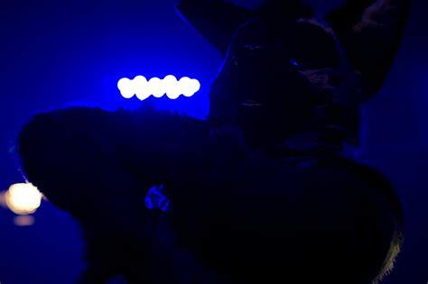 Till The Lights Go Out by Till The Lights Go Out Weasyl