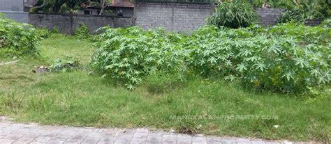 Pancing Murah Di Bali jual tanah kavling murah di daerah taman pancing pemogan