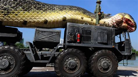 how long is a monster truck show giant snake caught in red sea youtube