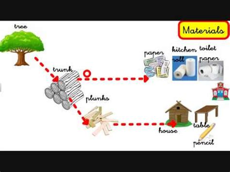 5 uses for products livingthings products what do we get from plants and