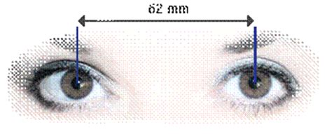 measuring your pupillary distance globaleyeglasses