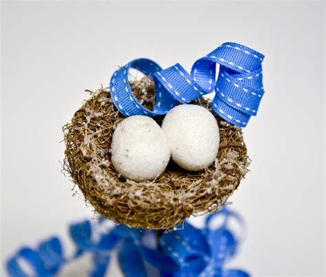 doves nest christmas ribbon birds nest and blue ribbon free stock photo domain pictures