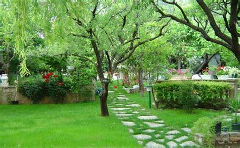 eliminare zanzare giardino zanzare in giardino ecco come eliminarle per sempre