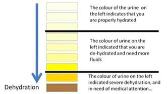 straw colored urine helen nutrition may 2012