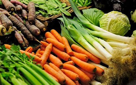 new year 7 vegetables number of vegans in britain rises by 360 in 10 years