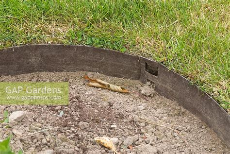 Landscape Edging Curved Gap Gardens Metal Curved Edging Between Lawn And Border