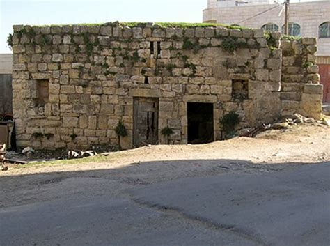 homes in jerusalem in jesus time near the great trees of