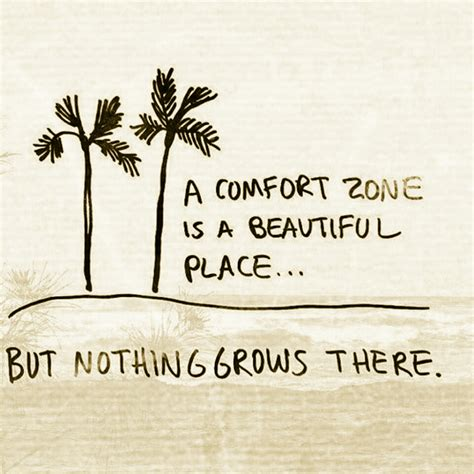 comfort in life a comfort zone the daily quotes