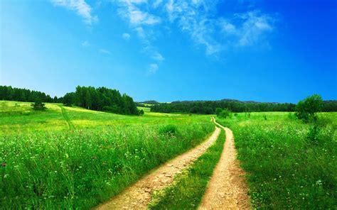 landscape path wallpaper 2560x1600 27220