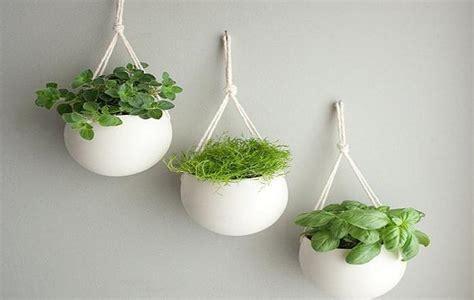 15 gorgeous phyto design ideas and indoor plants for marvellous indoor plants arrangement ideas pictures best