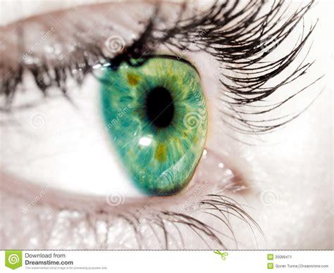 imagenes de ojos verdes y azules ojo verde imagen de archivo imagen 20089471