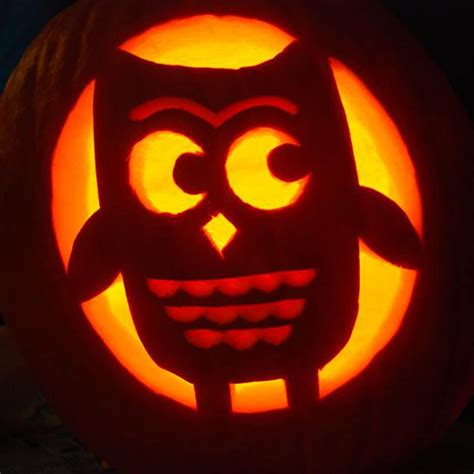 cute owl pumpkin  cute pumpkin carving patterns ideas