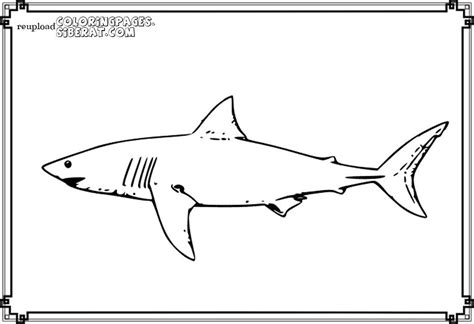 mako shark coloring pages